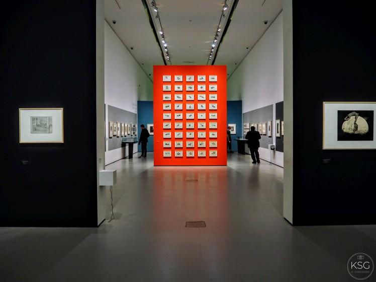 Klemens Brosch Ausstellung