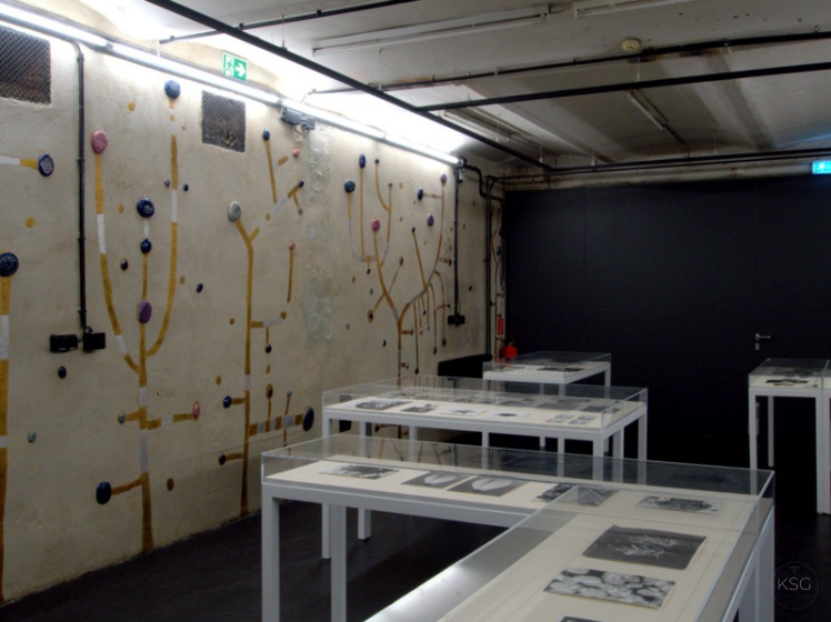 Lempert Exhibition