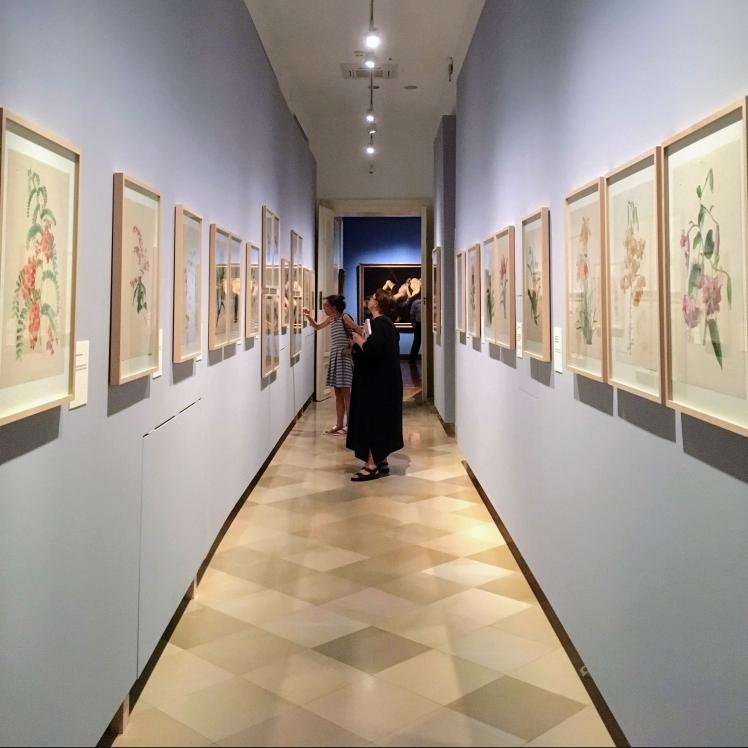 Paradisus Vindobonensis at Akademiegalerie