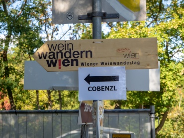 How to get to Cobenzl