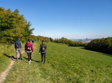 Hiking towards Cobenzl