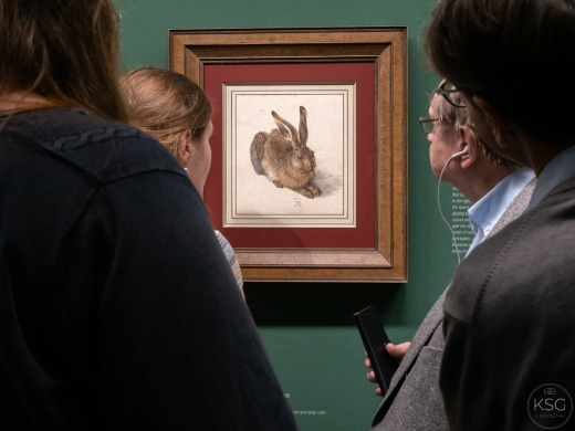 Young Hare, 1502