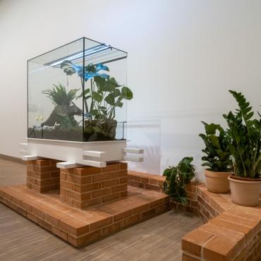 """""""Flower and Sculpture"""" (Blume und Plastik)"""